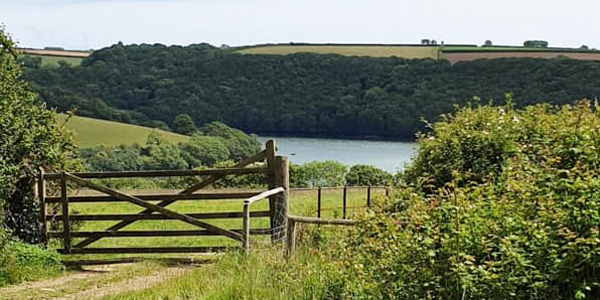 View across the Fal from Pill Farm Summer Camp