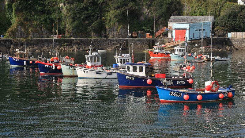Painted fishing boats of Mevagissey harbour